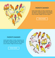 bright parrots flyer templates in flat style vector image vector image