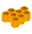 honeycomb icon isometric style vector image vector image