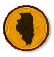 illinois map on timber vector image vector image
