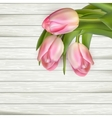 Pink tulips on wooden background EPS 10 vector image vector image