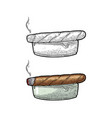 smoking cigar and ashtray vintage vector image vector image