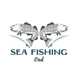 vintage sea fishing with cod fish vector image vector image