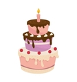 Cake birthday candle vector image