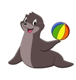 Cartoon Sea Lion vector image