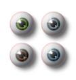 human eye balls vector image vector image