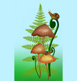 mashrooms a fern and vector image vector image