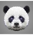 Panda low poly portrait vector image vector image