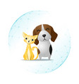 pet care concept with cat and dog vector image