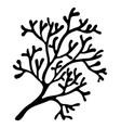 red algae silhouette symbol icon design beautiful vector image vector image