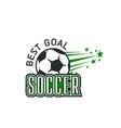 soccer team football ball goal icon vector image vector image