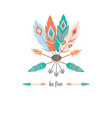 tribal feathers background vector image