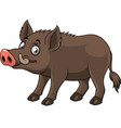 cartoon funny wild boar vector image vector image