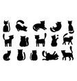funny cat silhouettes vector image vector image