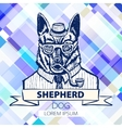 German Shepherd dressed up in suit fashion dog vector image vector image