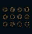 set of vintage sunburst fireworks vector image vector image