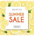 summer sale banner poster flyer blurred vector image vector image