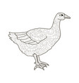 adult antistress coloring bird duck goose vector image