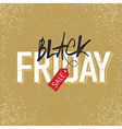 black friday with tag on yellow vector image vector image