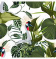 exotic birds monstera palm leaves pattern vector image vector image