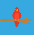 funny bird with a worm vector image