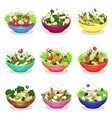various salads set vegetable fish and meat salad vector image