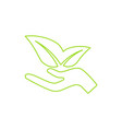 ecological icon human hand growing green leaves vector image