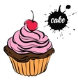 pastries sweets cupcake vector image