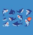 cute shark cartoon ocean fish funny character vector image