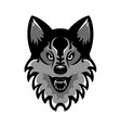 emblem of the muzzle of an angry wolf vector image