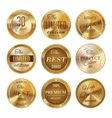 Golden labels set vector image vector image