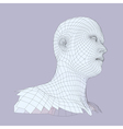 Head of the Person from a 3d Grid Human Head Wire vector image vector image