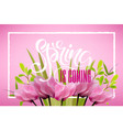 lettering of brush spring is coming you can use in vector image vector image