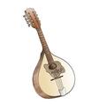 mandolin vector image