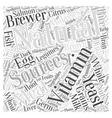 Natural Vitamin Word Cloud Concept vector image vector image