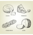 Sketch of different kinds of realistic cheese vector image vector image