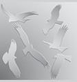 birds pregators vector image vector image