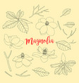 contours of flowers and leaf magnolia set floral vector image vector image