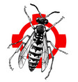 hand drawn wasp on crosshatch vector image vector image