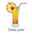monkey gland cocktail with red straw and slice of vector image