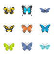 moth icons set flat style vector image vector image