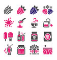raspberry and blackberry icon set vector image vector image