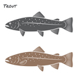 Trout fish vector image