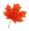 autumn natural leaf icon vector image vector image