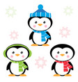 cartoon penguins isolated on white vector image vector image