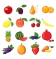 Fruit icons set cartoon style vector image vector image