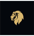 gold lion head black background flat design vector image vector image