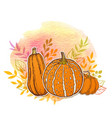 orange pumpkins and watercolor texture vector image