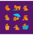 Pet Puppy Everyday Activities Collection vector image vector image