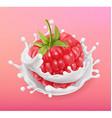 Raspberry and milk splash Fruit and yogurt vector image vector image
