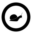 snail silhouette icon black color in circle vector image vector image